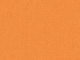 0867-mandarine