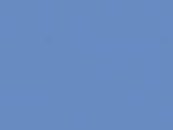 8204-bleuet