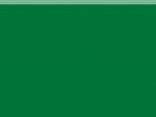 vert-7333-coloris-bache-tar